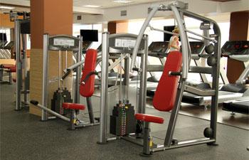 Легендарный фитнес клуб alex gym